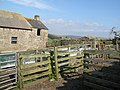 Sheep pens at the abandoned cottage in Swin Hope - geograph.org.uk - 1035797.jpg