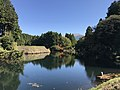 Shimono Pond 20171106-3.jpg