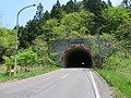 Shin-Mizusakai Tunnel 1.jpg