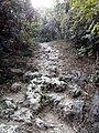 Shou-Shan(Shoushan National Nature Park)-PeterWen-6.jpg