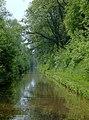 Shropshire Union Canal at Woodseaves Cutting, Shropshire - geograph.org.uk - 1333472.jpg