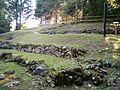 Sito palafitticolo di Fiavé (Dos Gustinacci).jpg