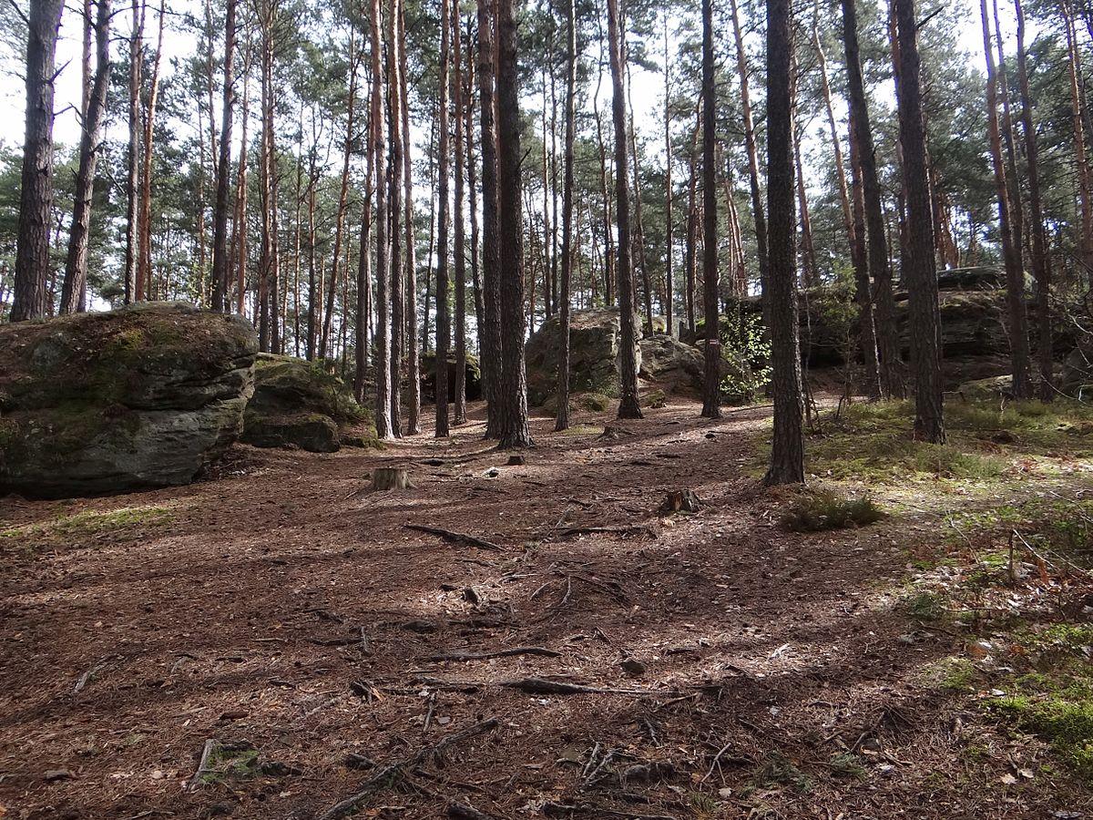 Obszar Chronionego Krajobrazu Doliny Kamiennej – Wikipedia.