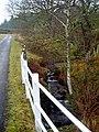 Small Burn Beside Loch Katrine Road - geograph.org.uk - 689631.jpg