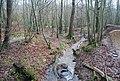 Small Stream, Stock Wood - geograph.org.uk - 1133273.jpg