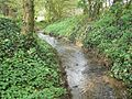 Small brook near Little Dalby - geograph.org.uk - 773151.jpg