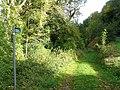 Small footpath near Lydbrook - geograph.org.uk - 1018139.jpg