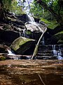 Somersby Falls - Brisbane Waters National Park, New South Wales.jpg