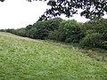 South of Little Broadoak Farm - geograph.org.uk - 531946.jpg