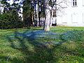 Spa park in Cieplice bk13.JPG