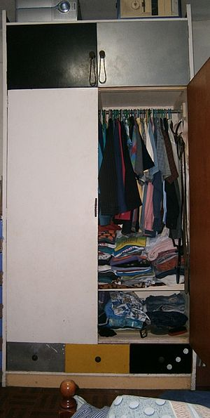 Closet - A typical modern wall-mounted space-saving closet.