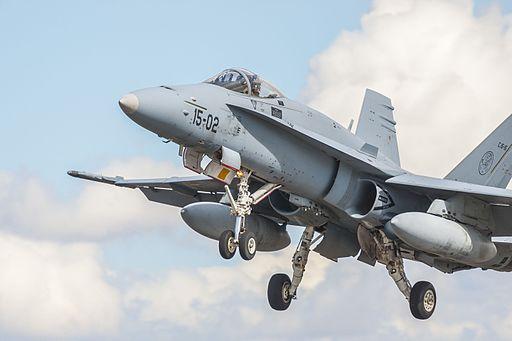 Spanish Hornet (10409626133)