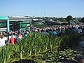 Spectators on Henman Hill - geograph.org.uk - 1390174.jpg