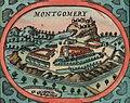 Speed Montgomery insert.jpg