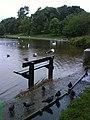 St. Margaret's Loch in flood - geograph.org.uk - 1463131.jpg