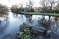 St. Stephen's Green Lake, Dublin-394607612.jpg