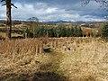 Start of footpath - geograph.org.uk - 1768962.jpg