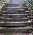 Steps (24442807850).jpg
