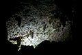 Sterkfontein Caves 27.jpg