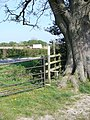 Stile on Honey Lane - geograph.org.uk - 408178.jpg