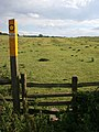 Stile on Knossington Lane - geograph.org.uk - 213077.jpg