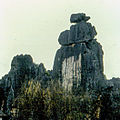 Stone forest 1983-6.jpg