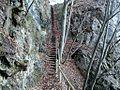 Stopnice na Malo Osojščico.jpg