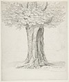 Study of a Tree; verso- Study of Houses MET DP815486.jpg