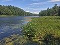 Sucker Lake.jpg