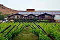 Sula Vineyard Main Building.jpg