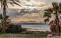 Sunset between palm trees, Ayia Marina Chrysochous, Paphos District, Cyprus.jpg
