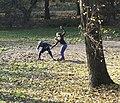 Szermierz i szermierka - trening.jpg