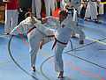 Taekwon-Do Landesmeisterschaft Uetersen 2014 07.jpg