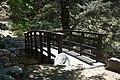 Tassajara Creek bridge.jpg