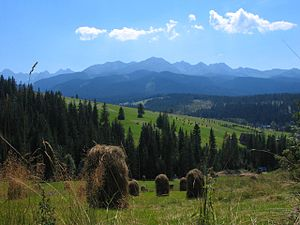 Podhale - Podhale. View from Tarasówka, with Tatra Mountains at the horizon line