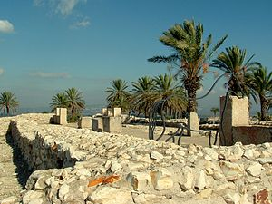 Tell Megiddo Preservation 2009 037
