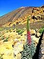 Teneriffa - Teide-Nationalpark – Caldera de Las Cañadas - panoramio.jpg