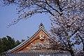 Tenryuji spring 003 Kyoto JPN.JPG