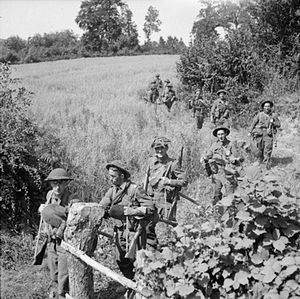 15th (Scottish) Infantry Division - Men of the 7th Battalion, Seaforth Highlanders advance up to the front line, 4 August 1944.