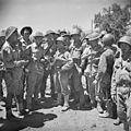 The Campaign in Sicily 1943 NA5887.jpg