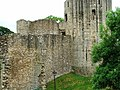 The Castle - geograph.org.uk - 52450.jpg