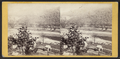 The Delaware from Prospect Point, from Robert N. Dennis collection of stereoscopic views.png
