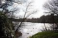 The Lake at Gnoll Country Park - geograph.org.uk - 155497.jpg