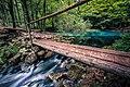 The Little Bridge Romania Landscape Photography (233891385).jpeg