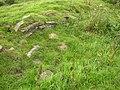 The Navigation Bank, facing stones, Birkenshaw - geograph.org.uk - 517701.jpg
