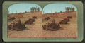 The fire wrecked street cars and once beautiful residence district on California St, from Robert N. Dennis collection of stereoscopic views.png
