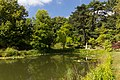 The pond at the botanical garden of Lund, 24.08.2016.jpg