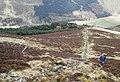 The south slope of Carrifran Gans - geograph.org.uk - 158162.jpg