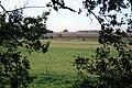 Through the hedge - geograph.org.uk - 1010027.jpg