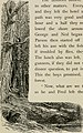 Through the wilds; a record of sport and adventure in the forests of New Hampshire and Maine (1892) (14770845264).jpg